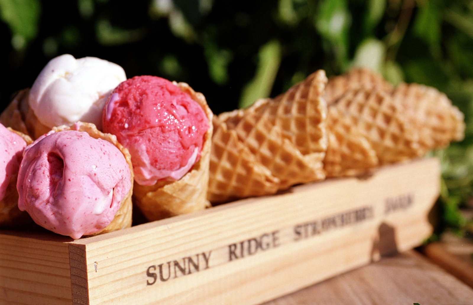 The scoop on Melbourne and Victoria's best ice cream